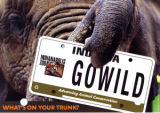 Indianapolis Zoo license plate mailer
